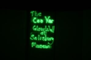coo-var-glow-wall-salisbury-museum-dec-2016-133